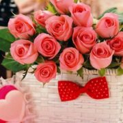 The World's Most Beautiful And Popular Flowers!!!