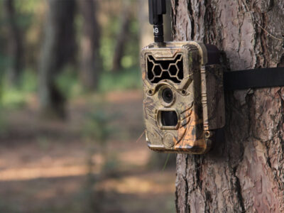 Impeccable Techniques to Set Up The Trail Camera